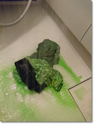 シャワーの水が緑色に;;;