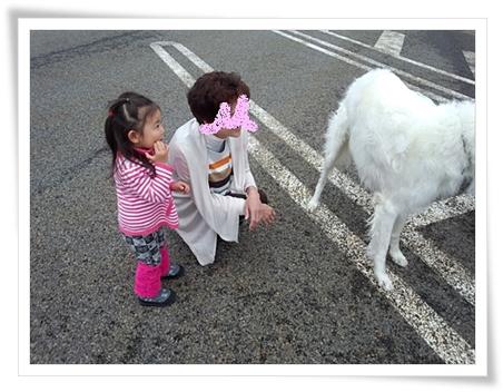 ばぁばと一緒に犬を見てるカブ子^^ 東海北陸道 飛騨白川PAにて♪